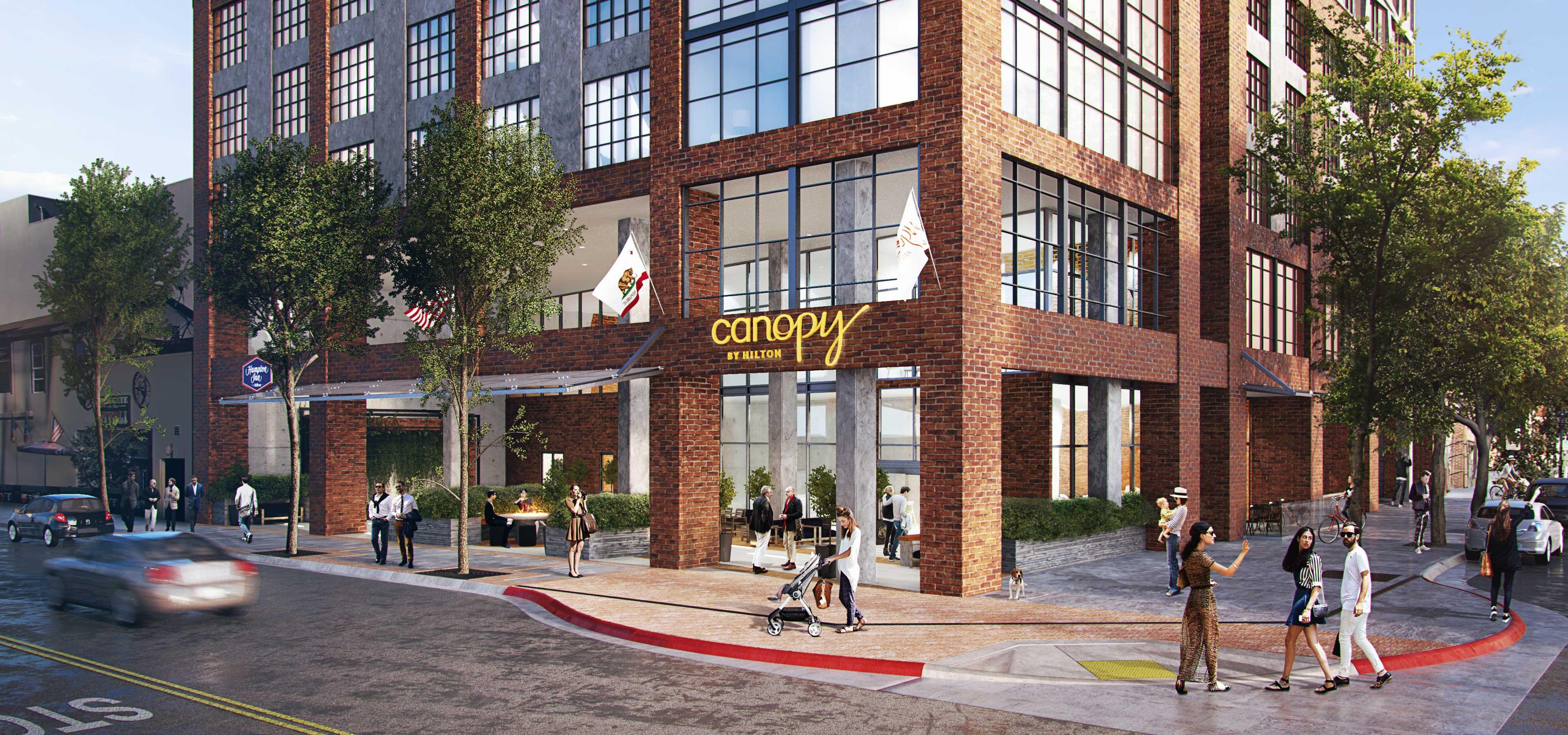5-canopy_web